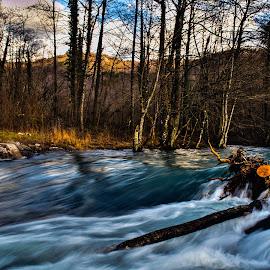 by Slavko Marčac - Nature Up Close Water
