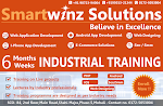 6 weeks/6 months industrial training,