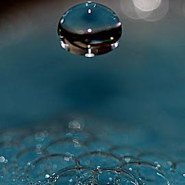 Falling water drop by Renata Ivanovic - Abstract Water Drops & Splashes ( water, abstract, blue, drop, close up )