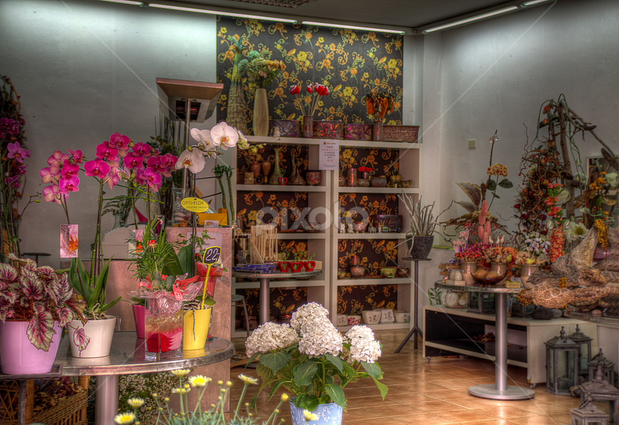 Flower Shop by Mirkka Andersson - City,  Street & Park  Markets & Shops ( flowers )