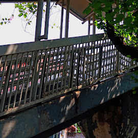 by J W - Buildings & Architecture Bridges & Suspended Structures