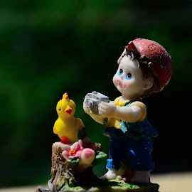 Photographer by Amal Raj - Artistic Objects Toys ( myviewshot, duck, toys, photographer, amalrajphotography, photography )