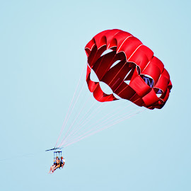 Parasail  by Will McNamee - Sports & Fitness Watersports ( gigart@aol.com, aundiram@msn.com, danielmcnamee@comcast.net, mcnamee2169@yahoo.com, ronmead179@comcast.net )