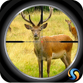 Game Sniper Deer Hunt 3D apk for kindle fire