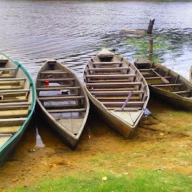COUNTRY BOATS by Sudipto Hazra - Transportation Boats ( water, wilderness, nature, boats, lake )