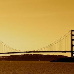 Lone Sailboat by Jeff Steiner - Buildings & Architecture Bridges & Suspended Structures ( golden gate bridge, sailboat, san francisco )
