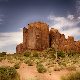 Monument Valley by Jeannie Meyer - Landscapes Deserts ( navajo nation, navajo, monument valley, mountains, native american )