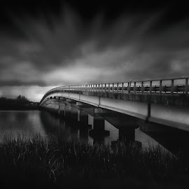 Lizard Bridge by Tamarae Baker - Black & White Buildings & Architecture ( leading lines, water, crossing, unknown, eerie, industrial, road, car, moody, bridge, black and white, low key, man made, travel, architecture )