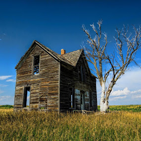 House Full of Stories by Jack Powers - Buildings & Architecture Other Exteriors ( field, farm, home, old, house, abandon, rustic )