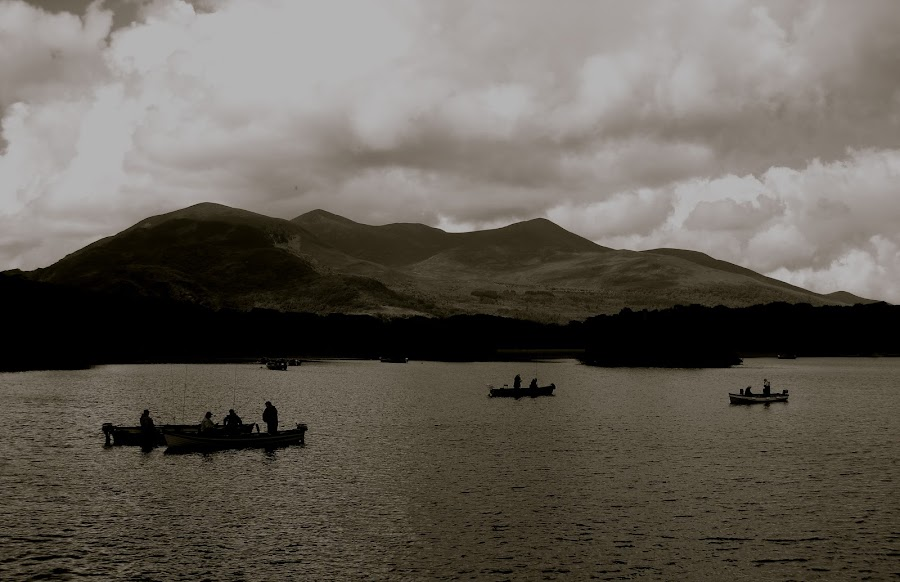 Afternoon Fishing by Seamus Crowley - Landscapes Waterscapes ( water, ireland, mountain, peak, lake, fishing, boat )