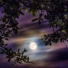 Digital Oil Full Moon by Robert Sellers - Digital Art Things ( digital, art, moon, oil, carolina, painting, south, beach, myrtle, myrtle beach, full )
