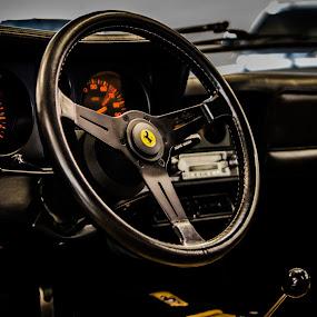 Ferrari 512BBi by Pol Lo Schienato - Transportation Automobiles