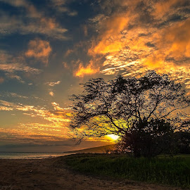 Maui, Hawaii From Photo Album: 3/20/15 Random Photos by Ed Hadley - Landscapes Sunsets & Sunrises