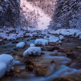 Water flow by Dani Turnšek - Landscapes Waterscapes ( forests, canon6d, canon, flow, landscape, winter, ice, beautifull, snow, triglaw, longexposure, rocks, bistrica, river )