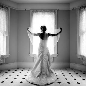 Veil by Drew Noel - Wedding Bride ( drew noel photography )