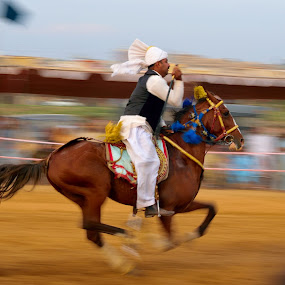 Tent Pegging Islamabad by Tahir Sultan - Animals Horses ( #tentpegging, #islamabad, @besthorse, #horse, #pakistan )