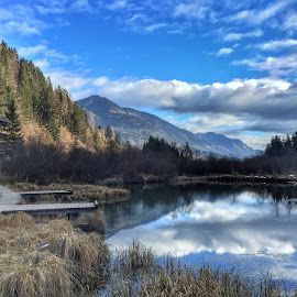 The beauty of reflection by Ivica Skočić - Instagram & Mobile iPhone ( sava, nature, beautiful, slovenia, zelenci )