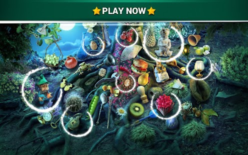 Game Hidden Objects Mystery Garden apk for kindle fire