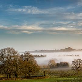 Mist over Avalon by Artur Szczeszek - Landscapes Prairies, Meadows & Fields ( england, foggy, somerset, fog, glastonbury, trees, sunrise, morning, tor, avalon, misty, mist )