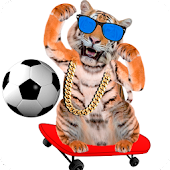 Download Amazing Tiger APK to PC