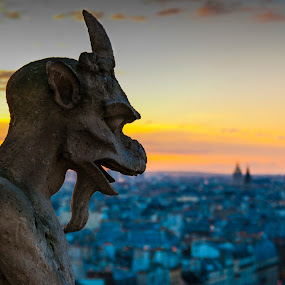 Gargoyle Staring over Paris by Teus Renes - City,  Street & Park  Historic Districts ( paris, eiffeltower, sunset, gargoyle, evening, dusk )