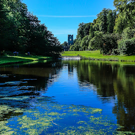 Leading to Fountains Abbey by Mandy Hedley - Landscapes Travel ( water, fountains, trust, national, lakes, abbey )