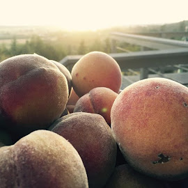 Summer Peaches by Camille Nordgren - Instagram & Mobile iPhone