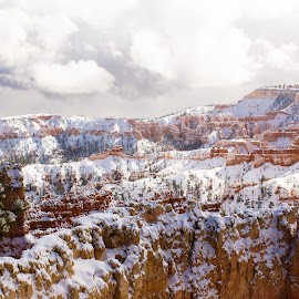 Bryce canyon  by Brian Nipe - Landscapes Caves & Formations