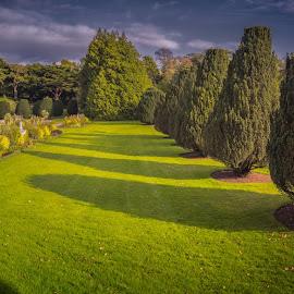 Dyffryn Gardens by Krasimir Lazarov - City,  Street & Park  City Parks ( park, wales, gardens, landscape, united kingdom )