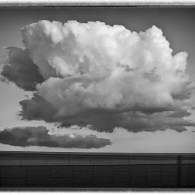 Cloud Blossum by Roger Armstrong - Landscapes Cloud Formations ( clouds, monochrome, sky, texas, cloud formation, highway scene )