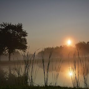 An easy morning by Thomas Fitzrandolph - Landscapes Sunsets & Sunrises ( fog, waterscape, niagara county ny, nikon d5200, sunrise, morning, landscapes, lockport ny, mist )