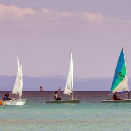 Yelken Yarışması by Veli Toluay - Sports & Fitness Other Sports ( didim, yarıma, spor, yelken, deniz )