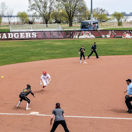 About to be thrown out at 3rd by Jason Lockhart - Sports & Fitness Baseball ( minnesota golden gophers, softball, big ten, wisconsin badgers, play at 3rd base, goodman softball complex )