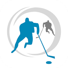 Hockey Coach Vision Player