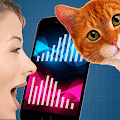 Game Cat Translator Simulator apk for kindle fire