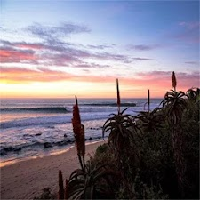 Jeffreys Bay Mobile App