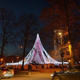 by Vida Jankaitiene - City,  Street & Park  Night