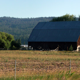 OLD BARN by Cynthia Dodd - Novices Only Objects & Still Life ( field, old, barn, farmland, country )