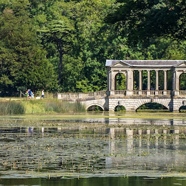 The Palladian Bridge by Mark Thompson - Buildings & Architecture Statues & Monuments ( water, stowe landscape gardens, palladian bridge, lake, bridge, national trust, national trust places )