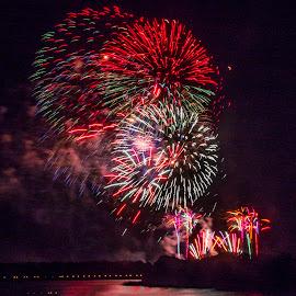 Fireworks at Walt Disney World by Dee Haun - City,  Street & Park  Amusement Parks ( r180509f2911rce2, amusement park, multicolor, fireworks, walt disney world,  )