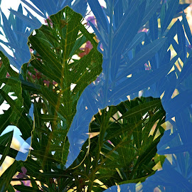 Double exposure by Simona Serdiuc - Abstract Patterns ( abstract, double exposure, leafy, leaf, fig tree leaf, leaves )
