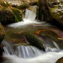 by Siniša Almaši - Nature Up Close Water ( water, up close, stream, nature, cascade, view, stones, rocks, spring, light, depth, river )