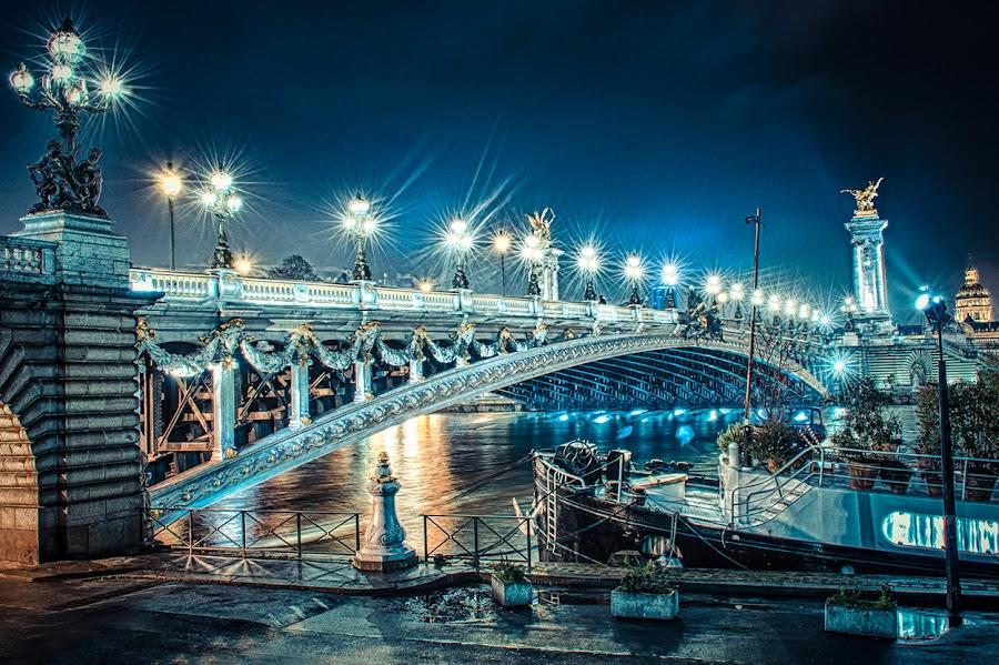Pont Alexandre III - Paris by Mike Kremer - Buildings & Architecture Bridges & Suspended Structures ( paris, seine, famous landmarks, pont alexandre iii, ekimpix, night, bridge, pont )