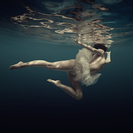 Ballet by Dmitry Laudin - Nudes & Boudoir Artistic Nude ( reflection, blue, light, underwater, ballet, nude, dive, girl, water, swim )