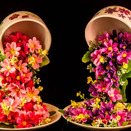 Flower cascade by Garry Chisholm - Artistic Objects Cups, Plates & Utensils ( cup, garry chisholm, craft, saucer, art, flower )