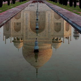 The reflection is as good...or may be even better than the real thing. by Sridhar Balasubramanian - Buildings & Architecture Public & Historical ( love, taj, reflection, taj mahal, agra, mumtaz, india )