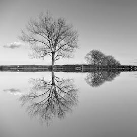 Nirvana at magic lake Lajmir.. by Željko Salai - Black & White Landscapes