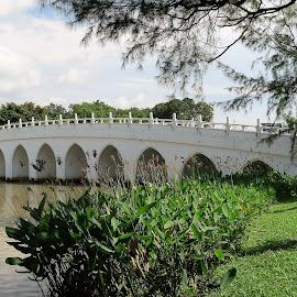 White Rainbow Bridge by Dennis Ng - Buildings & Architecture Bridges & Suspended Structures
