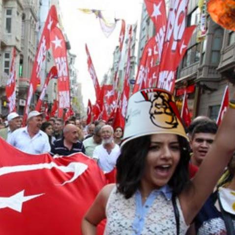 In a Show of Nationalism, Turkey Bans Chicken