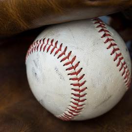 by Ed & Cindy Esposito - Sports & Fitness Baseball ( ball, baseball, inside, sports )